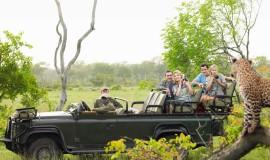 Туры в ЮАР и помощь в оформлении визы