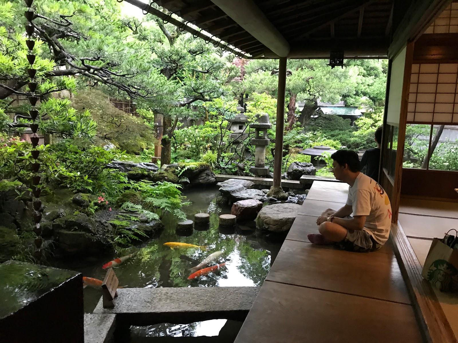 тур  япония